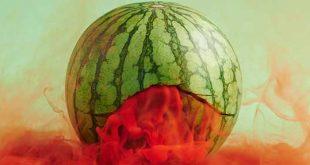 تصاویر سورئال از راز زندگی میوهها و سبزیجات