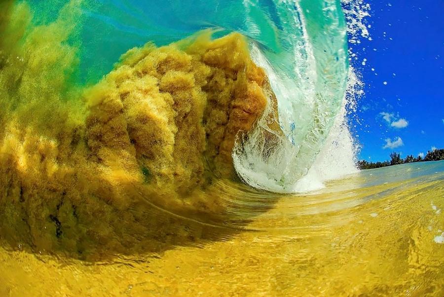 Wave Pichome (13)