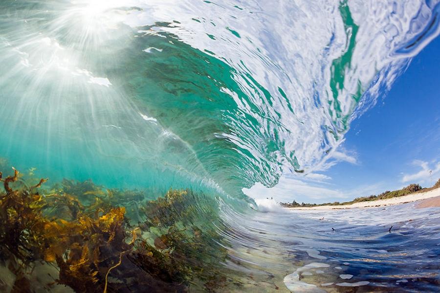 Wave Pichome (9)