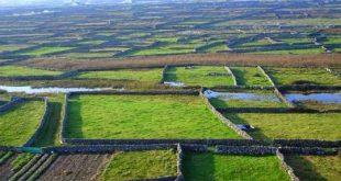 دیوارهای سنگی ایرلند