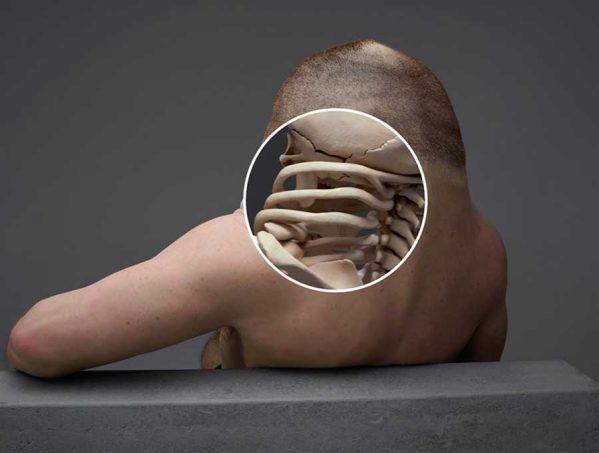 بدن ایده آل برای زنده ماندن در تصادفات چگونه باید باشد