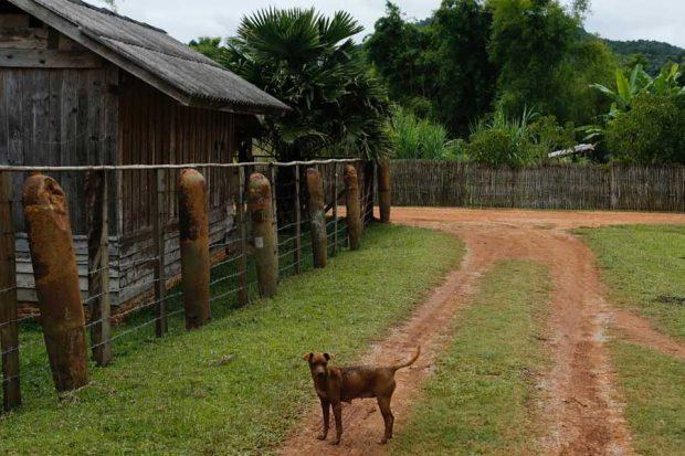 Lethal legacy of secret war in Laos (22)