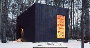 کتابخانه در جنگلهای نیویورک