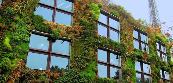 باغچه های شهری
