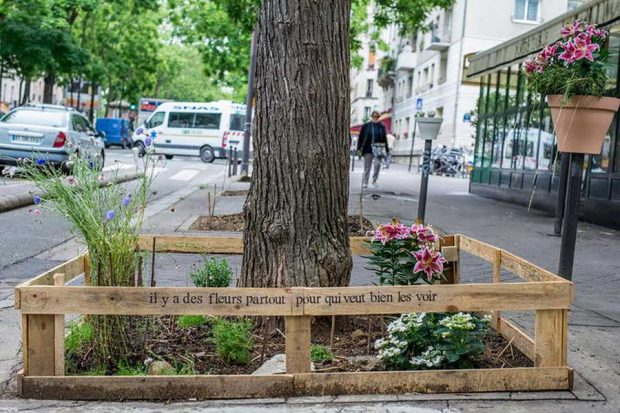 تصاویری از باغچه های شهری در پاریس