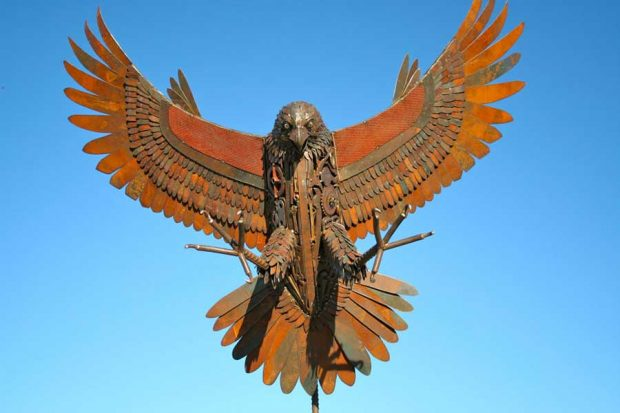 تصاویری از تبدیل ضایعات فلزی به مجسمه حیواناتتصاویری از تبدیل ضایعات فلزی به مجسمه حیوانات