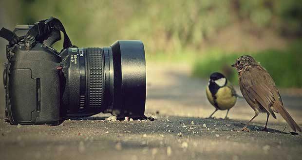 بهبود زندگی با عکاسی
