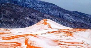 برف در صحرای بزرگ آفریقا