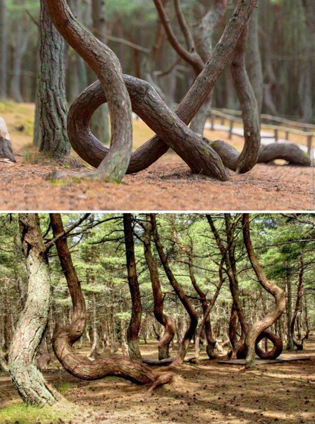 معماهای عجیب مناظر طبیعی
