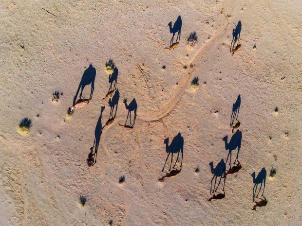 نگاهی به عکس های برگزیده کمپین نمای دید پرنده