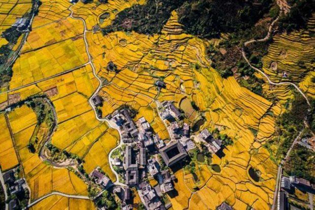 برندگان مسابقه عکس های هوایی