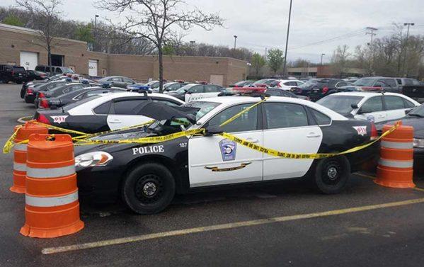 تصاویری از آشیانه پرنده روی ماشین پلیس