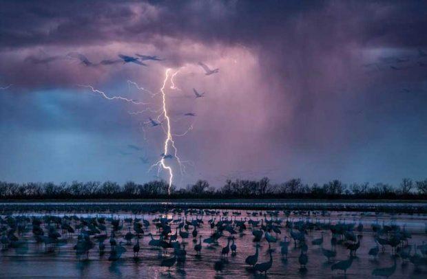 برترین عکس های سال 2016 به انتخاب نشنال جئوگرافیک